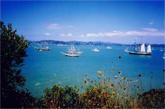 Tall ships gather in the Bay of Islands for the sesquicentennial of the Treaty of Waitangi.