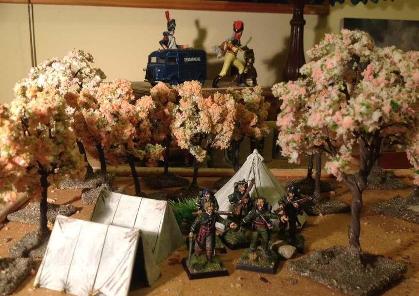 sharpe blossoms 1