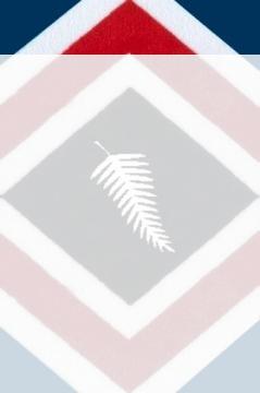 flag4a_b